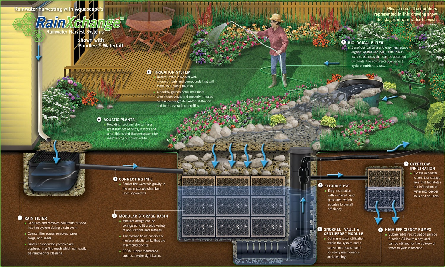 Harvesting rainwater for Pictures of rainwater harvesting system