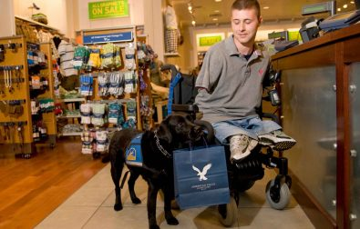 amazing-canine-heroes-assistance-dogs