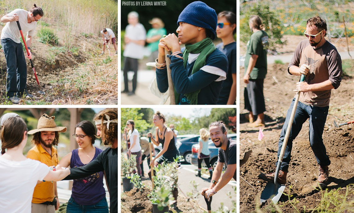 Millennial Magazine - Permaculture-Action-Day
