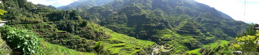 Millennial Magazine - Pana Banaue Rice Terraces 870p