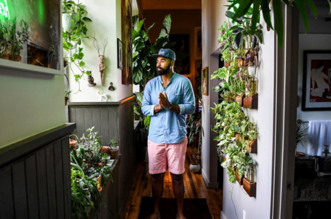 why-are-millennials-going-gaga-over-houseplants