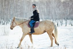 horseback-riding-what-you-should-and-shouldnt-wear